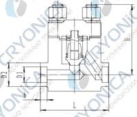 Криогенный обратный клапан T651DH10-40 PN350
